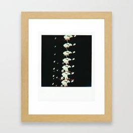 An Abundance Framed Art Print