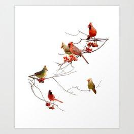 Perching Cardinals Art Print