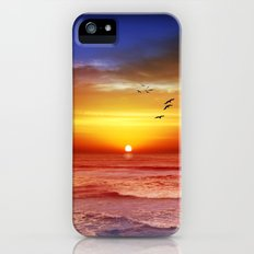 Sunset Beach iPhone (5, 5s) Slim Case