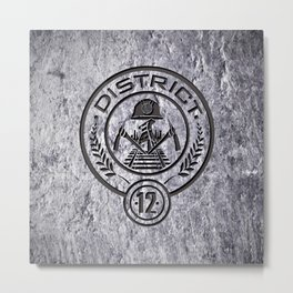HG- DISTRICT 12 Metal Print