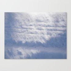 Snowy Treads Canvas Print