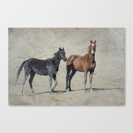 Mud Stockings Canvas Print