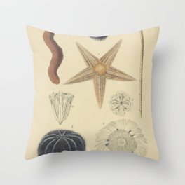 Sea Urchin And Starfish Throw Pillow
