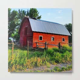 countryside Metal Print