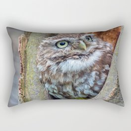 close up owl in the hole Rectangular Pillow