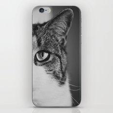 Cat Eye iPhone & iPod Skin