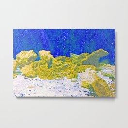 Coral Rocks Underwater Metal Print