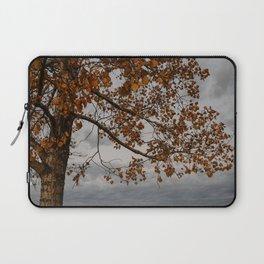 S1nCeRitY Laptop Sleeve