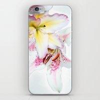 kafka iPhone & iPod Skins featuring Medley by anipani