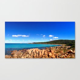 Point Picquet Canvas Print