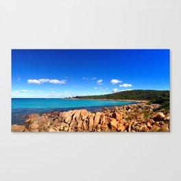 Point Picquet Canvas Print