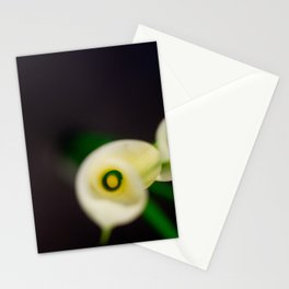 Lily Calla - Everyone Stationery Cards