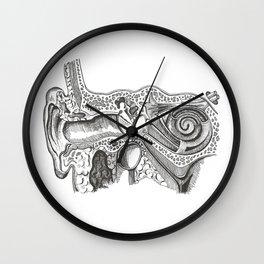 Ear Anatomy Wall Clock