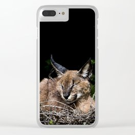 Napping Cat Clear iPhone Case