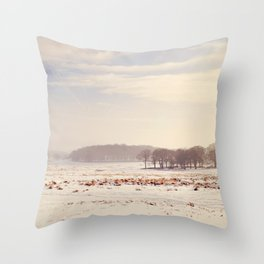 Snowy valley. Throw Pillow