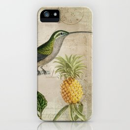 Vintage Bird And Pineapple iPhone Case