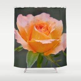 Beauty....... Shower Curtain