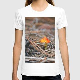 Hammock Hills Mushroom 2014 T-shirt