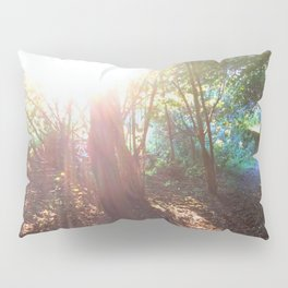 My Disappearing Love Pillow Sham