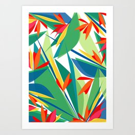 Tropical floral composition, exotic flowers, birds of paradise. Art Print