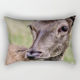 Gaze Of A Young Hart Rectangular Pillow