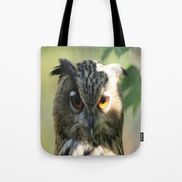 Owl in the light Tote Bag