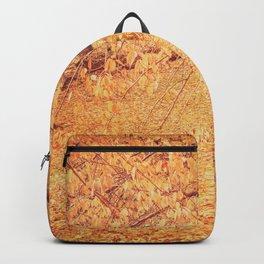 Autumn - New York City Backpack