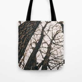 Fall Hike Tote Bag