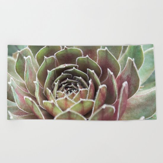 Succulent | Fuzzy Red Cactus Beach Towel