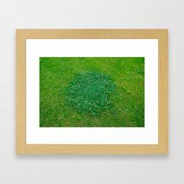 The grass is green Framed Art Print