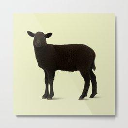 Black Lamb // Yellow Metal Print
