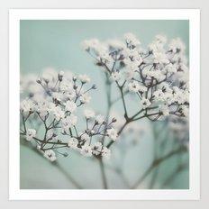 flowers VI Art Print