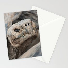 The ancient one Stationery Cards