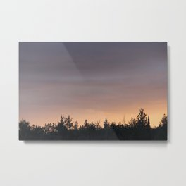 What is Life? Metal Print