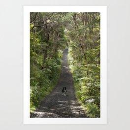 Border Collie on a Walk Art Print