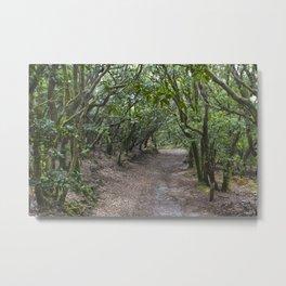 bosque Metal Print