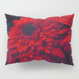 Red Flowers at Night (Color) Pillow Sham
