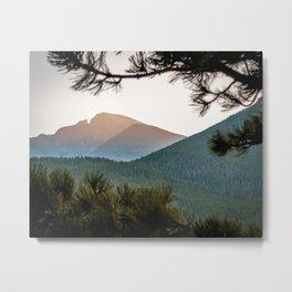 Long's Peak Through the Pine Metal Print