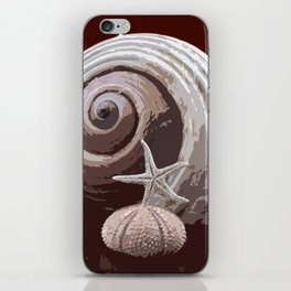 seashells 2 iPhone Skin