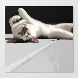 Upside Down Meow Canvas Print