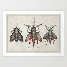 Hawk moths Art Print