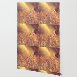 Golden Days Of Spring Wallpaper