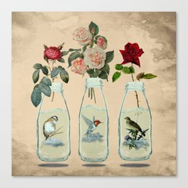 bottled spring Canvas Print