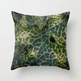Milk thistle, silybum marianum leaves Throw Pillow