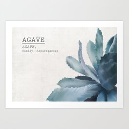 Agave, botanic print - grey Art Print