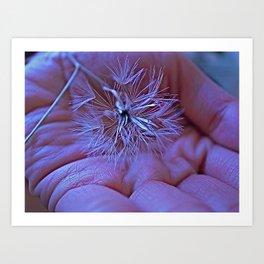 make a wish ,hope dreams come true.  Art Print