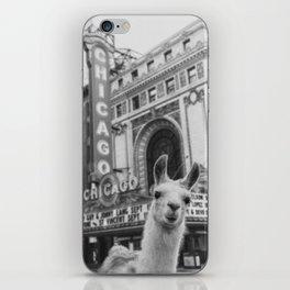 Chicago Llama iPhone Skin