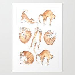Catastrophic Art Print