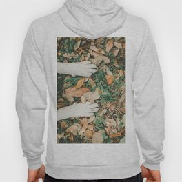 White Dog Paws On Fallen Leaves Hoody