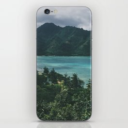 Crouching Lion iPhone Skin